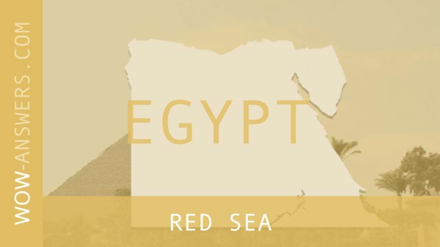 words of wonders Red Sea
