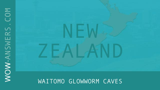 Words Of Wonders Waitomo Glowworm Caves